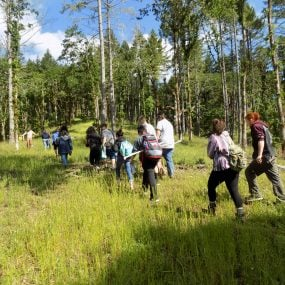 students hiking on trail