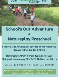 School's Out Adventure and Natureplay Preschool
